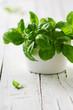Green fresh basil - 75060031