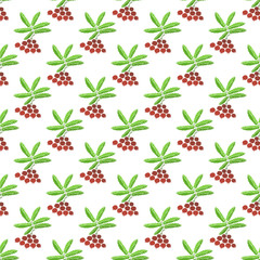 Berries seamless pattern - vector berry texture