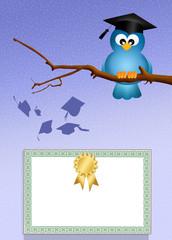 bird graduate