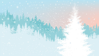 light blue fir forest under snowfall