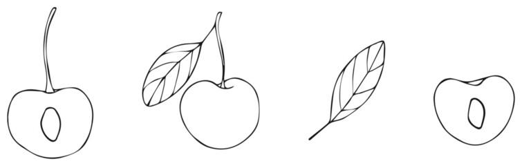Delightful garden - cherry 2