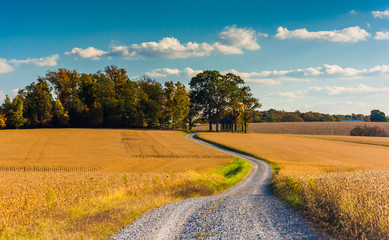 Dirt road through farm fields in rural York County, Pennsylvania