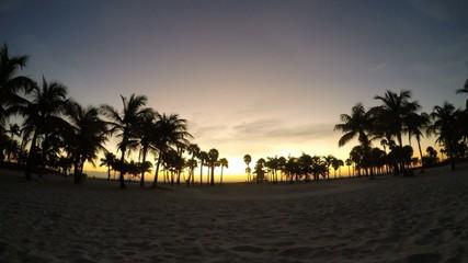 sunset over the tropical beach