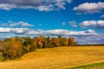 Farm fields and autumn color in rural York County, Pennsylvania.