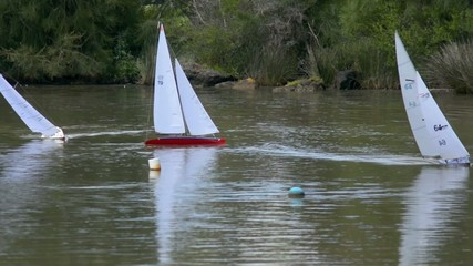 Remote control sailing wooden yachts in a pond