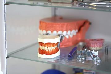 Gebiss beim Zahnarzt