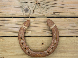 iron horseshoe