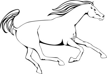 sketch of running horse, black and white, outline