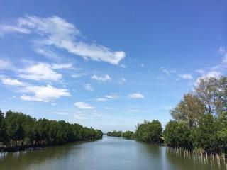 Beautiful view along the riverside