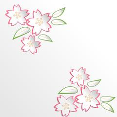 Sakura Cherry Blossom flowers in paper cut style background