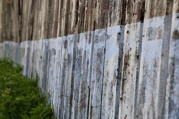 Blue fence-Vanuatu