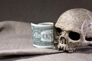 Slull And Dollar