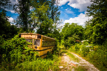 School bus in a junkyard.