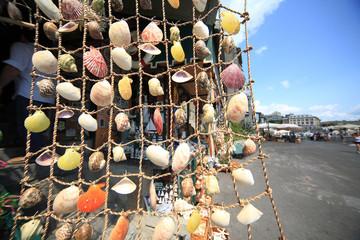 souvenir prodotti tipici porto venere conchiglie