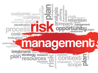 Word cloud of Risk Management related items, vector background