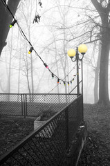 Christmas lights in a foggy garden. Monochrome photo