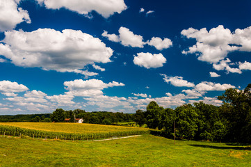 Summer clouds over fields in rural York County, Pennsylvania.