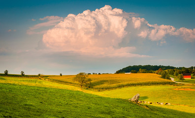 Summer storm cloud over rolling hills and farm fields in rural Y