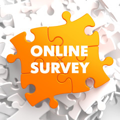 Online Survey on Orange Puzzle.