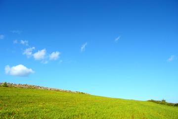 Collina con prato verde e cielo azzurro - Terra - Pianeta verde