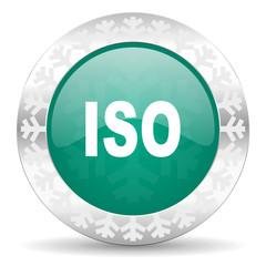 iso green icon, christmas button