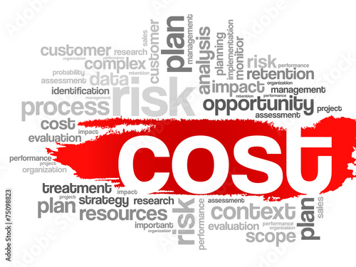 Word cloud of COST related items, vector presentation background © dizain