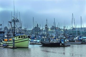 boats on marina
