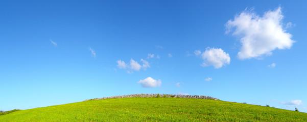 Prato verde con cielo azzurro e nuvole - pianeta verde