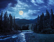 Mountain river in pine forest at night - 75106464