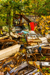 Vehicle parts and autumn color in a junkyard.