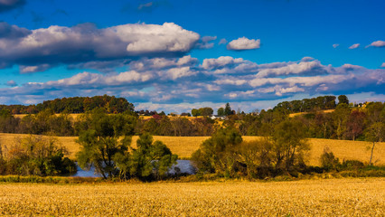 View of a pond and farm fields in rural York County, Pennsylvani