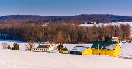 View of a yellow barn and farm during the winter in rural York C
