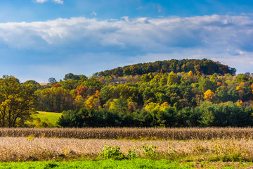 View of early autumn color in the rolling hills of York County,