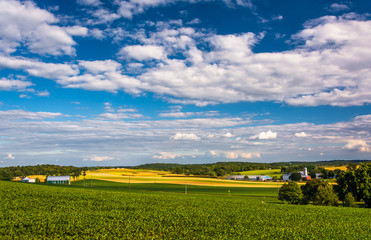 View of farm fields and rolling hills from a hill near Cross Roa