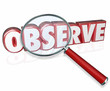 Observe 3d Word Magnifying Glass Examine Inspect Pay Attention