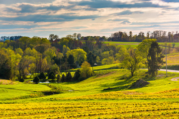 View of spring color in York County, Pennsylvania.