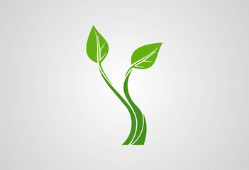 Plant ecology logo vector