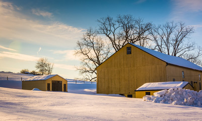 Yellow barn in a snow-covered farm field in rural York County, P