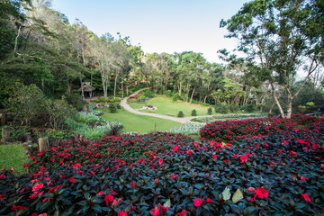 Garden of Doi Tung Royal Villa, Chiang Rai, Thailand
