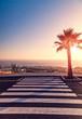 Crosswalk, palm and sunset