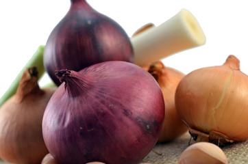 Onion, garlic and leek isolated