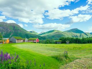 Норвежская деревня на фоне зеленого луга