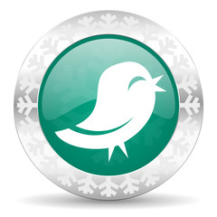 twitter green icon, christmas button