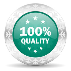 quality green icon, christmas button