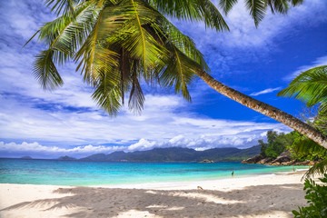 tropical holidays - beaches of Seychelles islands