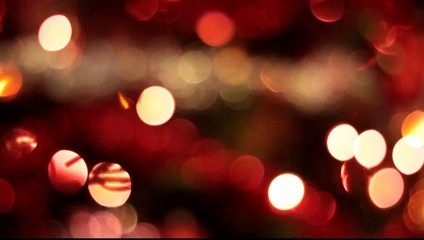 christmas lights on the tree