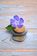 Drie zenstenen met paarse bloem op hout