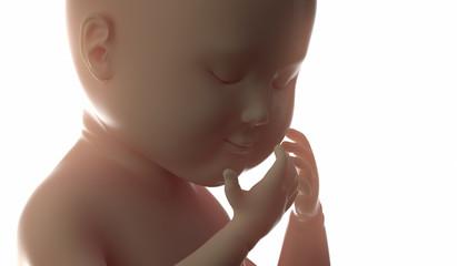 3d 4d ultrasound scan fetus pregnancy concept