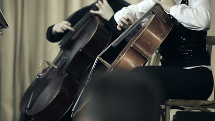 Two cellist playing fingers on cello at the concert