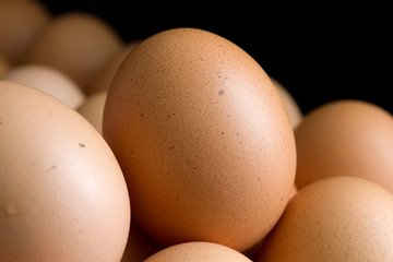 Detail of chicken eggs on black background.